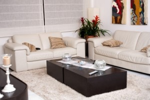 Green cleaning tips for living room